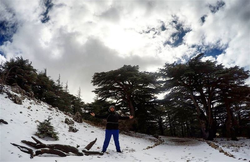 Hiking Barouk Cedars Lebanon 🌲❄️ wildernessculture outdoors hikers... (Arz el Bâroûk)