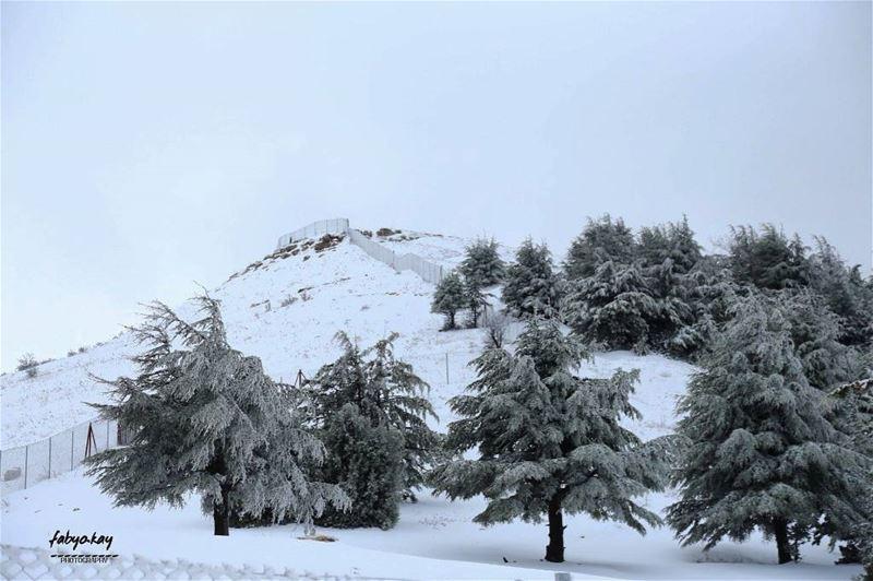 Happy weekend my dear friends....... (Falougha, Mont-Liban, Lebanon)