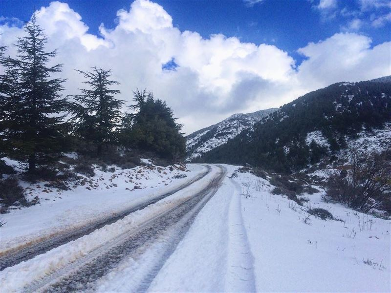 Roads were made for journeys not destinations! whatsupplebanon ... (Arz Aïn Zhalta)