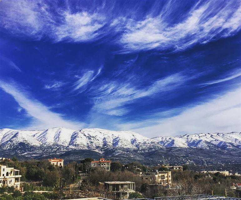 كأنـَّما جبلُ الباروكِ أذهَلَهُ أن تنحني، فمشى في يومكَ الشجرُ (Bâroûk, Mont-Liban, Lebanon)