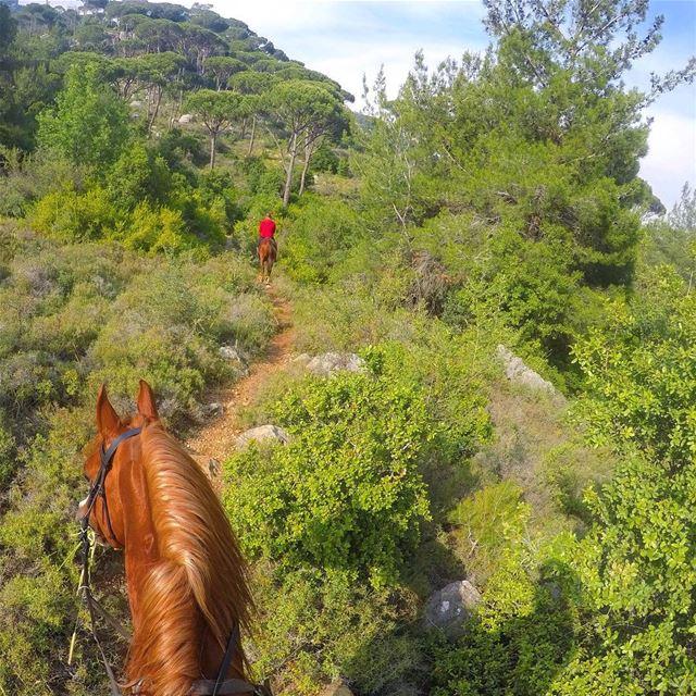 Sunday ride 🐎••••• Lebanon MyLifeAMoi horse horsebackriding ... (Beit Meri, Mont-Liban, Lebanon)