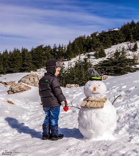 After hiking in the beautiful cedars reserve, playing with snow and of... (Al Shouf Cedar Nature Reserve)