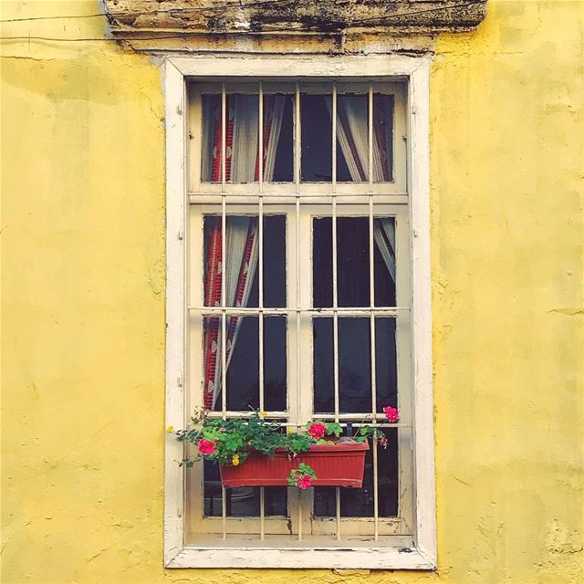 Every Beiruti window has a story 🌼 WHPwindows Lebanon tb travel... (Beirut, Lebanon)