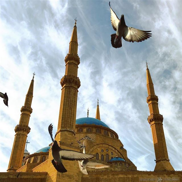 Fly... (Beirut, Lebanon)