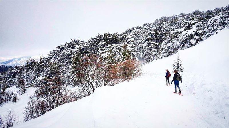 👫 snowshoeingadventures ❄️🎿...