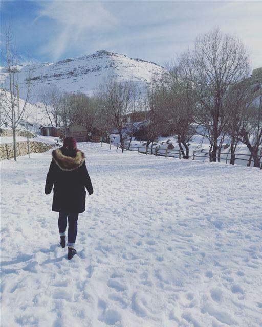 Tout est cotonneux. ❄️🎶. HiverLibanais Winter ColdDays ... (Faraya, Mont-Liban, Lebanon)