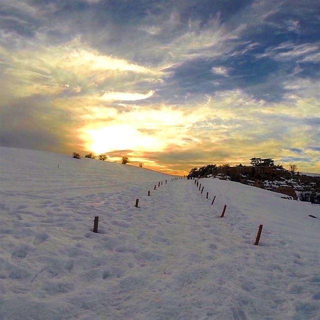 Lebanon Good Night 🌲🌲🌲🌲🌲 promaxsports snowshoeinglebanon mashiya ... (Arz Tannoûrîne)