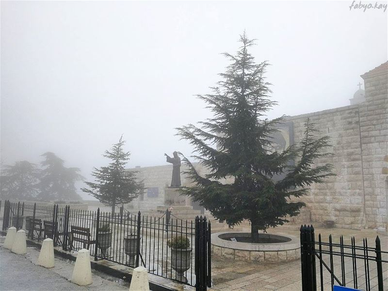 Beauty and silence in Nature... _____________________________________... (Mazar Saint Charbel-Annaya)