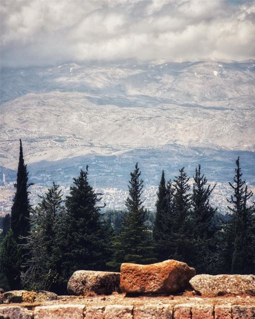 We have nothing to lose and a world to see! 🗺⛰🍃 (Zahlé, Lebanon)