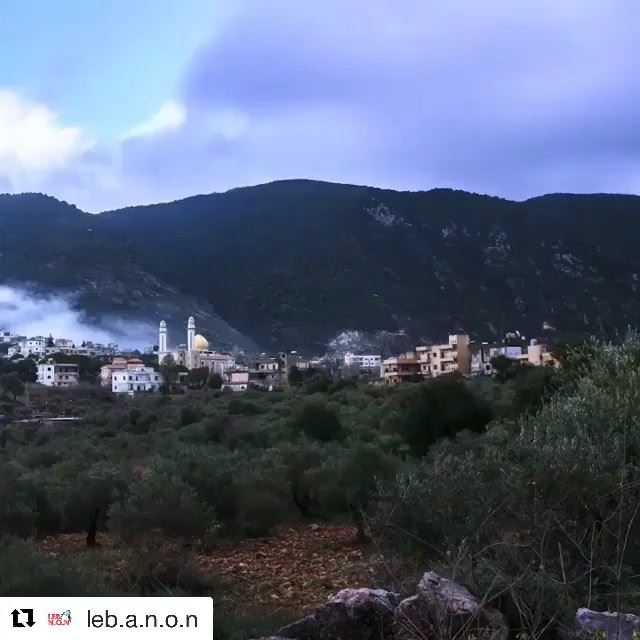@moe_mokalled arabsalim lebanon nature beautiful loveit livelovelebanon ...