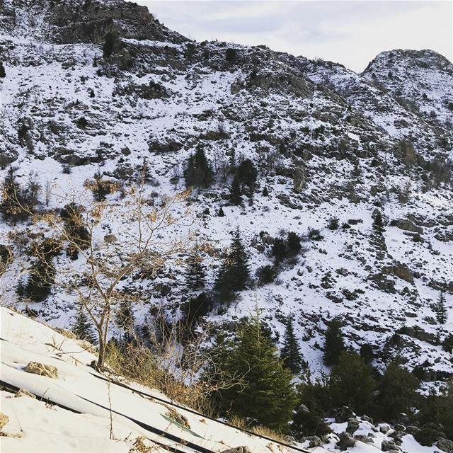 letitsnow ❄️ haveagteatday keepwarm winterseason beatifulview ... (Ehmej, Mont-Liban, Lebanon)