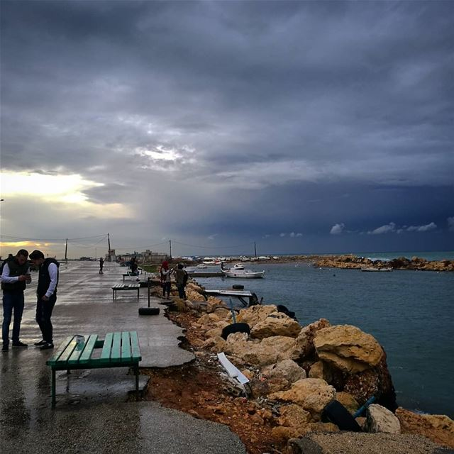Me puedes mostrar la foto? - ichalhoub in Tripoli north Lebanon...