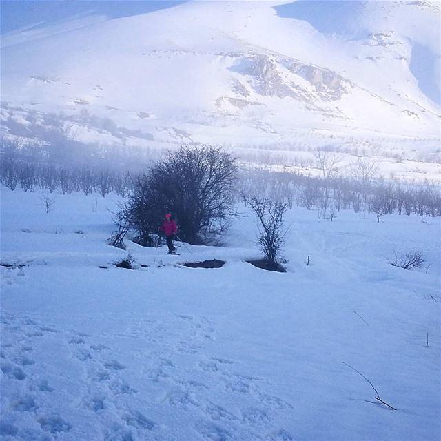 ❄❄ snow winter wintertime fog photography nikon livelovewinter ... (Bekaa Kafra)