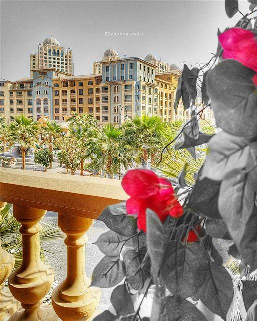 أيقتلك الغياب ؟أنا يقتلني الحضور الباهت الذي يشبه العدم * amazing_qatar... (The Pearl Qatar)