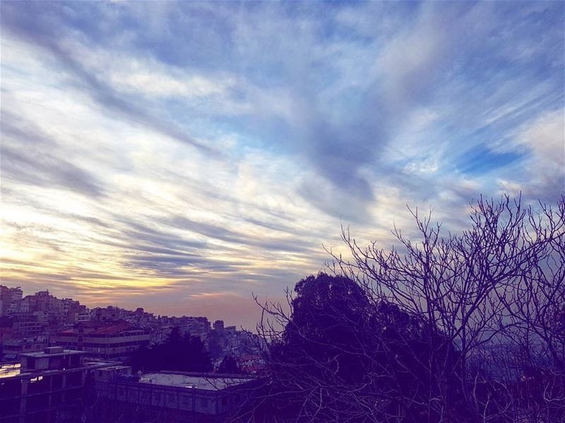 picoftheday friday world lebanon sky sunset tree winter nature life free...