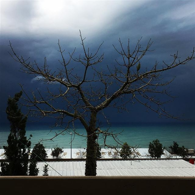 Stormy weather streetphotography landscapephotography blizzard storm ... (Unifil)