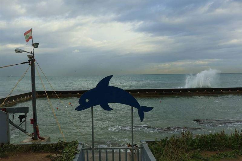 Dolphinus Beirutus:) thisislebanon79 viewbug lebanoninapicture lebanon... (Beirut, Lebanon)