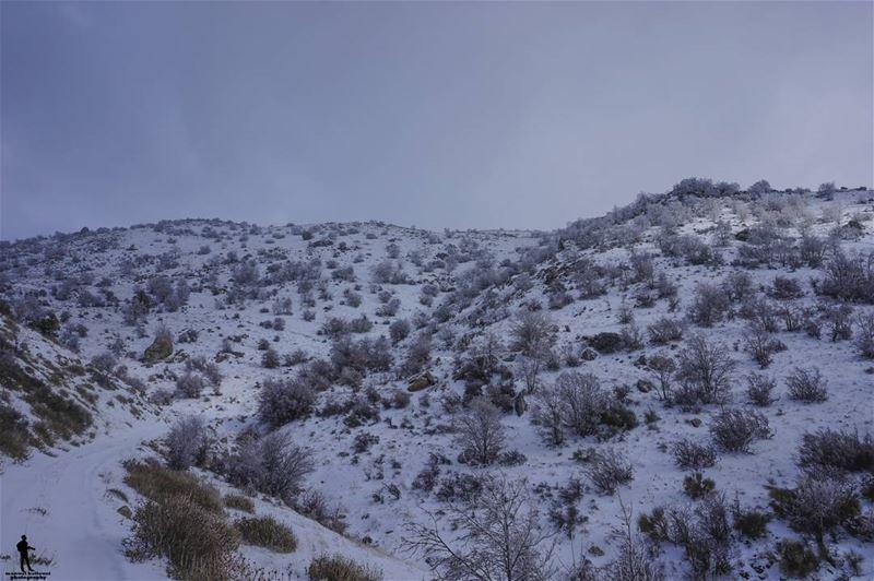 Freezing moments ❄️ snow lebanon chouf livelovechouf beirut ...