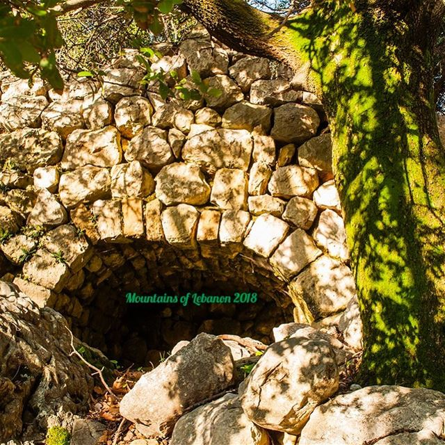 The subterranean level in a (vertical) watermill where water gushes out... (Wadi es Salib)