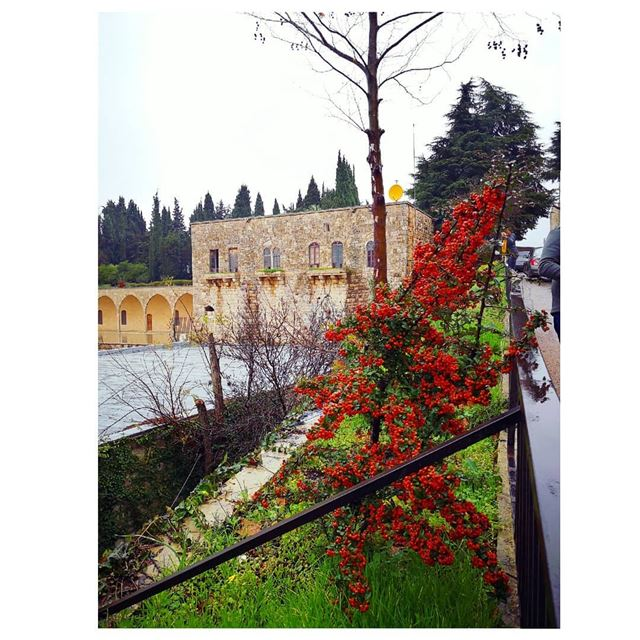 Wandering in my own country 😍 Roadtrip chouf winter 🇱🇧---... (Beiteddine Palace)