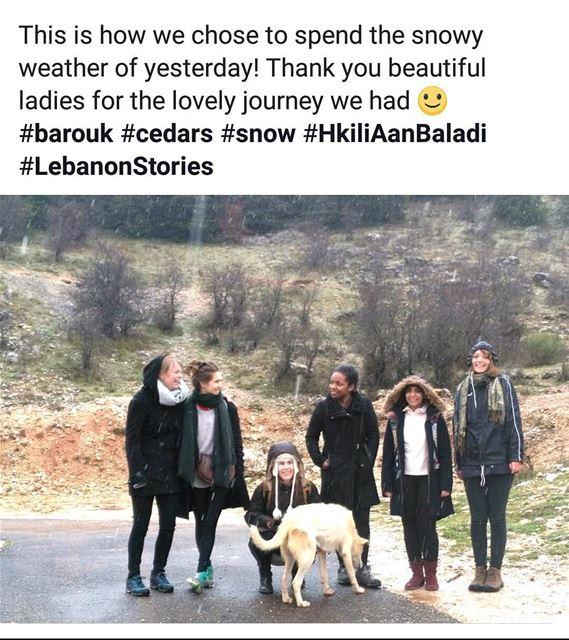 barouk snow cedars privatetour HkiliAanBaladi LebanonStories ...