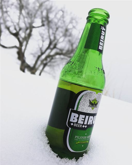 beer  beirutbeer  sunday  fun  family  happy  cold  weather ... (The Cedars of Lebanon)