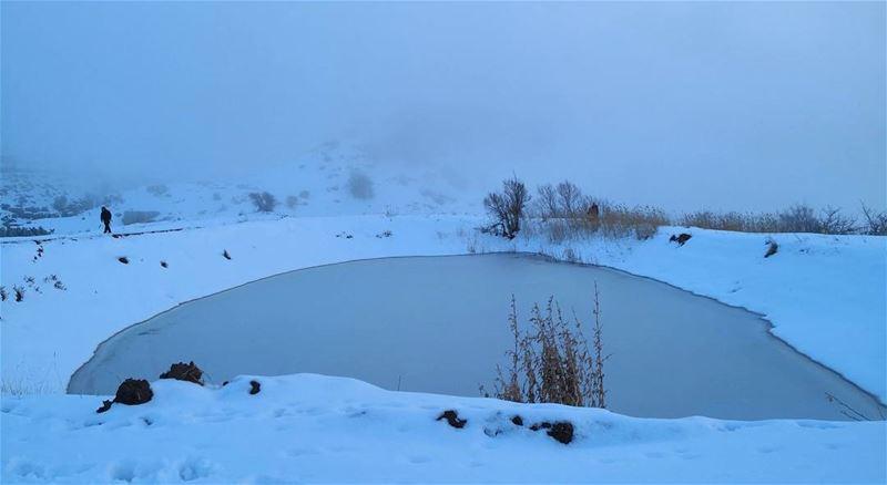 wild life frozenlake snowhike lebanon mountain hiking ...