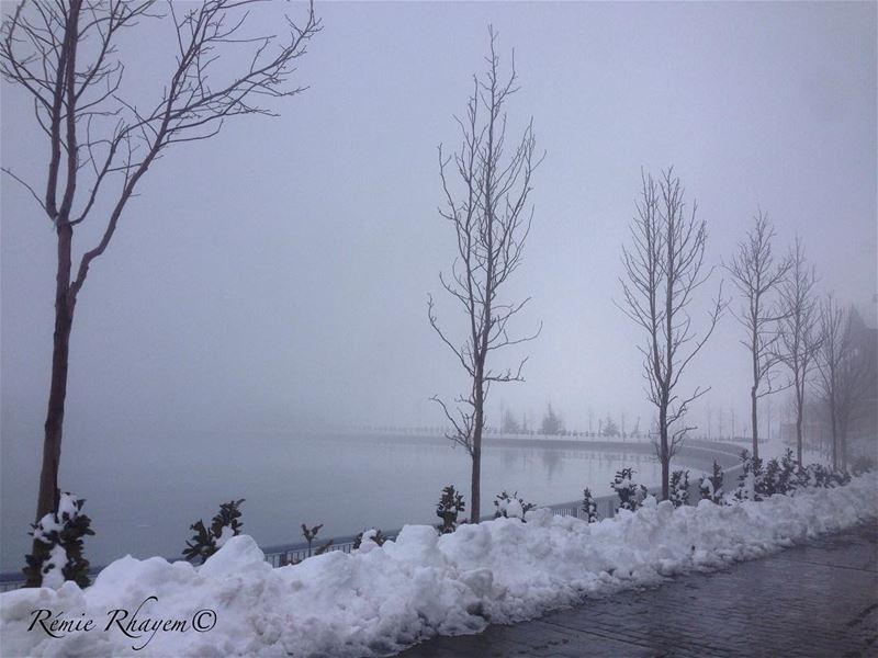 ~Cold~ (Zaarour Lake)