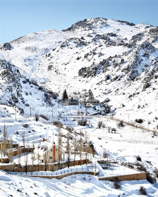 Coolest Backyard... Don't you agree? ☃️..... lebanon winter snow ... (Ehmej, Mont-Liban, Lebanon)