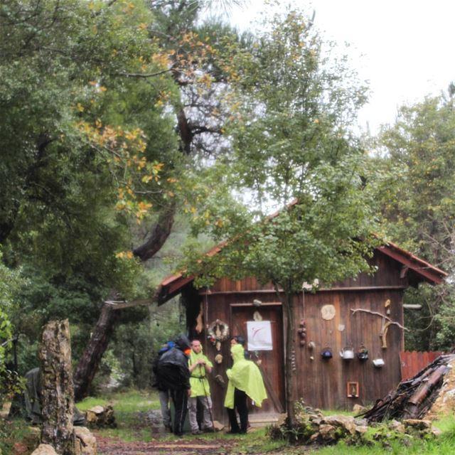 hikingadventures nature greenworld freshweather raining baakline ... (Baakline 109)