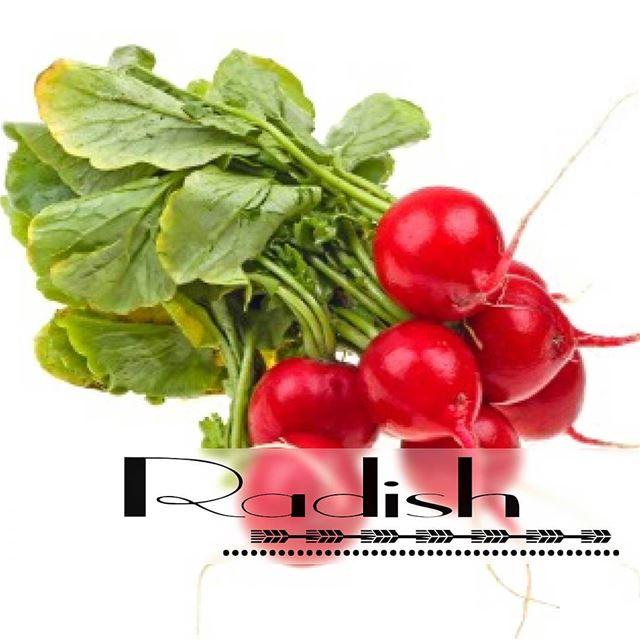 evgeniia_nutrition✅ RADISHWhile often sliced and used as a garnish in... (Jbeil-Byblos)