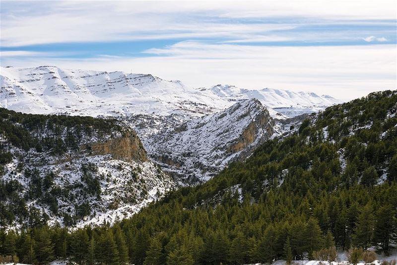 🌲🏔❄️- lebanon north hadatheljebbeh mountains clouds snow ... (Hadath El-Jubbah, Liban-Nord, Lebanon)