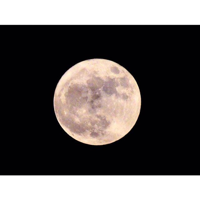 Shoot for the moon 🌚🌝 .... moon night nightphotography photo ...