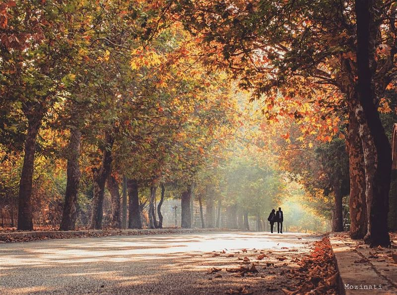 Every Time I See U, I fall In Love all Over Again.. 😊❤ ( to someone) ===== (Sawfar, Mont-Liban, Lebanon)
