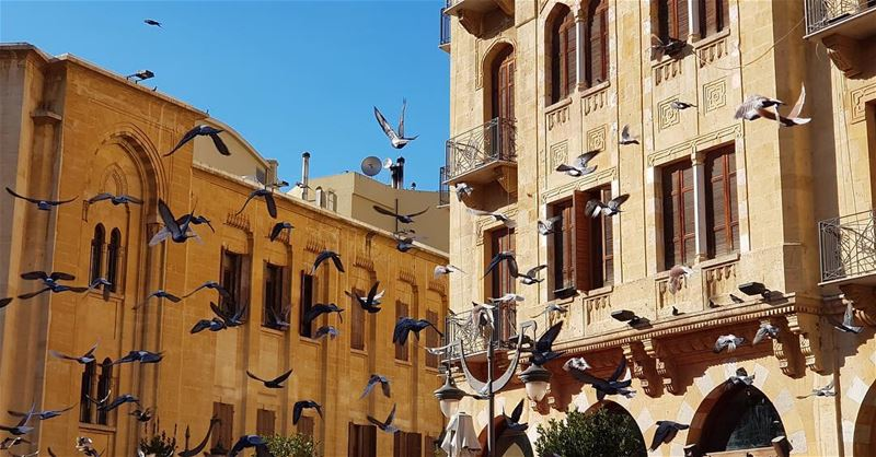 Beirut DT 🇱🇧 natgeoyourshot natgeolebanon beirut livelovebeirut ... (Beirut, Lebanon)