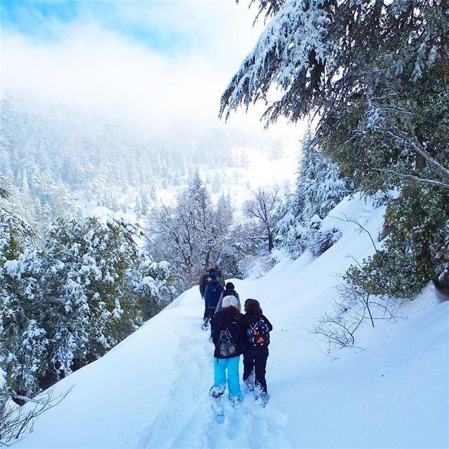 EXPLORE I Lebanon, Snowshoeing & Ehden Reserve this Sunday🌲🌲🌲🌲🌲🌲� (Horsh Ehden)