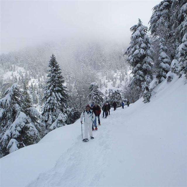 EXPLORE I Lebanon, Snowshoeing & Ehden Reserve this Sunday🌲🌲🌲🌲🌲🌲� (Ehden, Lebanon)