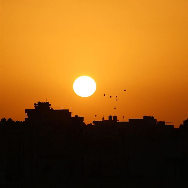 🌅.... sunset sunsetporn sunsetpics landscape landscapephotography... (Beirut, Lebanon)