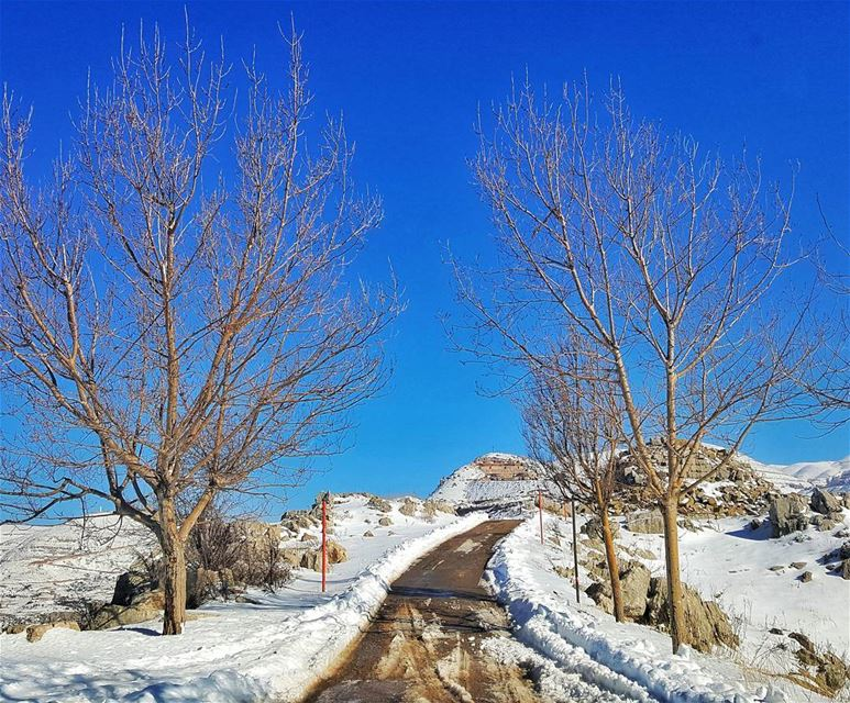 .....Either find a way, or make one.... livelovelebanon ... (Kfardebian)
