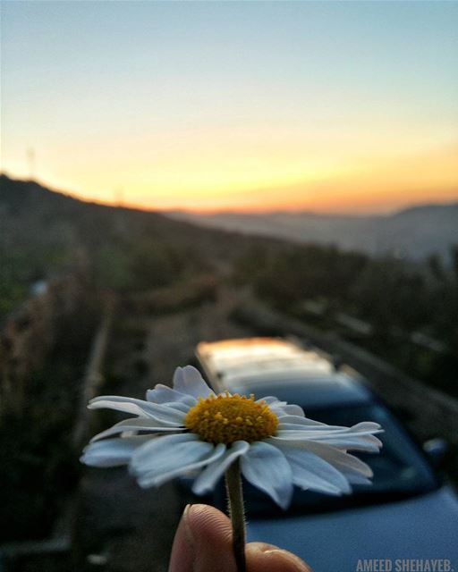"""A beautiful sunset that was mistaken for a dawn.""-Claude Debussy sunset ... (Btalloun, Mont-Liban, Lebanon)"