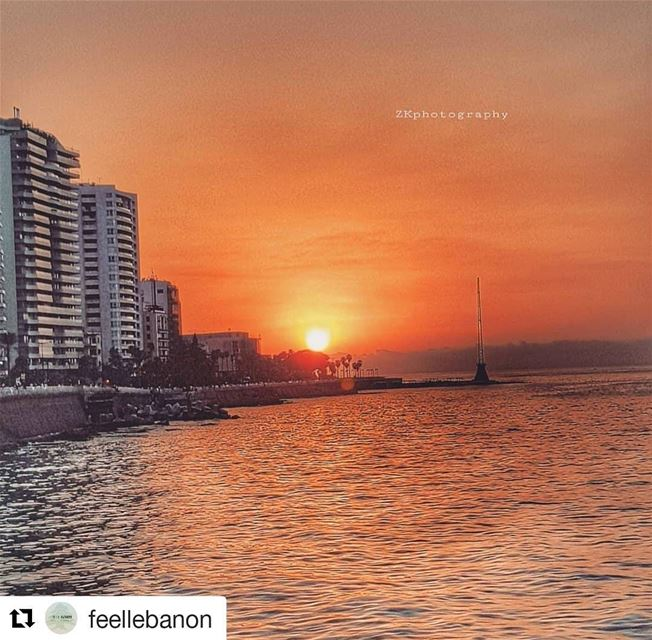 Thank you so much for the lovely feature and Repost @feellebanon 😊🌸✌・・・...