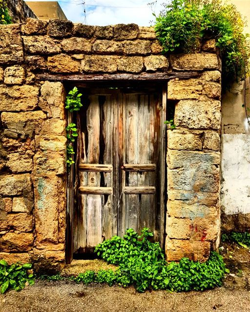 The door will be open to those bold enough to knock village vintage ... (Batroûn)