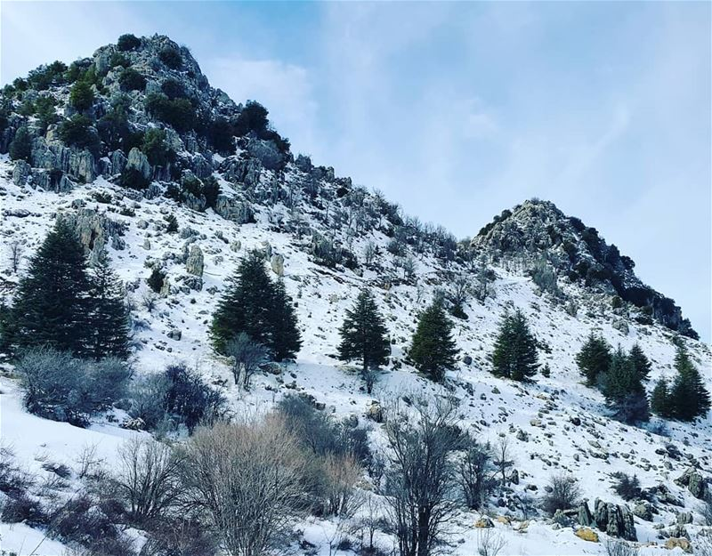 In all things of nature there is something of the marvelous snow snowhike... (Arz Ehmej)