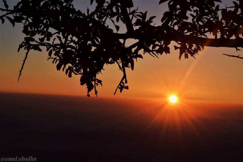 مثل شمس الغروب،،، راحل ومريح في آن واحد👌👌 lebanon photography ...