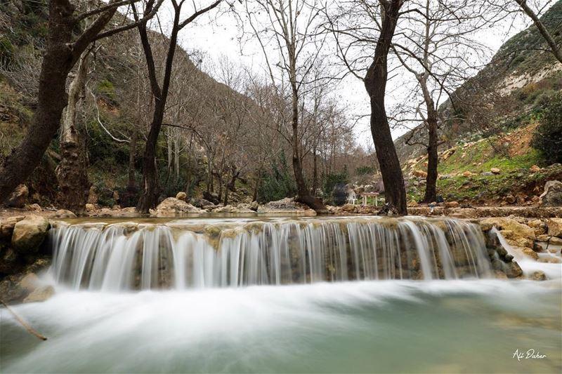 Wadi l akhdar river.04/02/2018... photography photographer... (Nabatîyé)