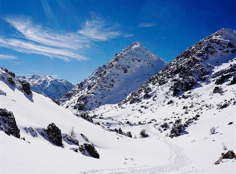 📍The glorious mountains of Tannourine, Lebanon...━ ━ ━ ━ ━ ━ ━ ━ ━ ━ ━... (Tannurin At Tahta, Liban-Nord, Lebanon)