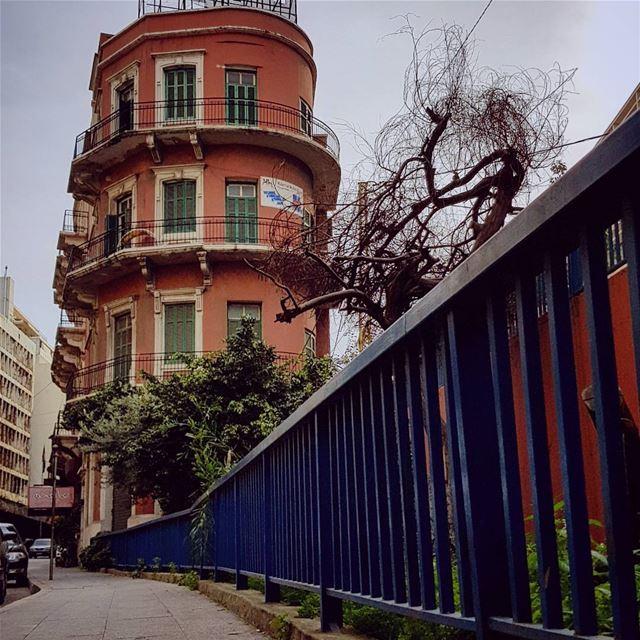 My Bike's Captures.. 🚲📸🍃 beirut lebanon ........ sundayfunday... (Beirut, Lebanon)