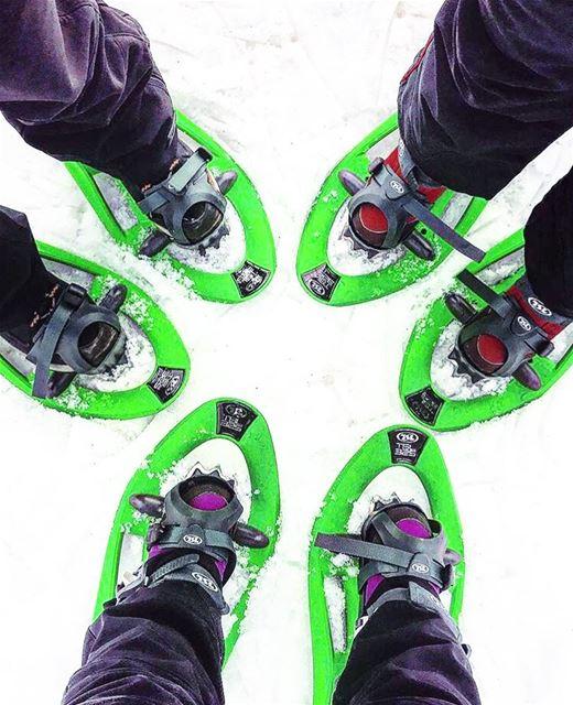 إيجري بهالصورة 🎿 snowshoeingadventures ❄️..... (Cedars of God)