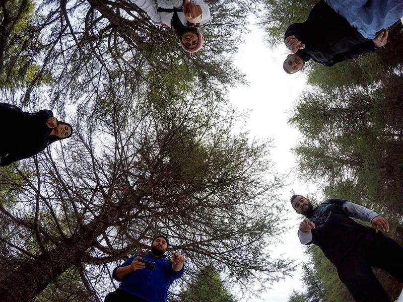 hiking among cedars 🌲🌲🌲 barouk lebanon ... (Bâroûk, Mont-Liban, Lebanon)