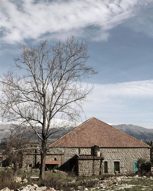 Feels like home 🏡 @livelovemarjeyoun (Marjayoûn, Al Janub, Lebanon)